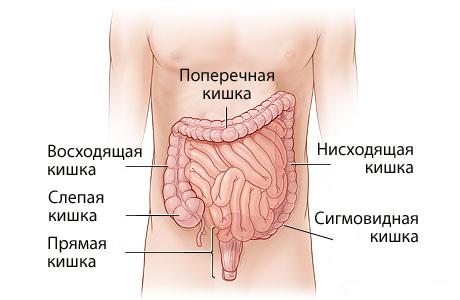 комплексное средство от паразитов для человека